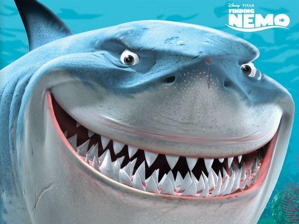 Fish Of The Week Name That Fish Finding Nemo Aquatic