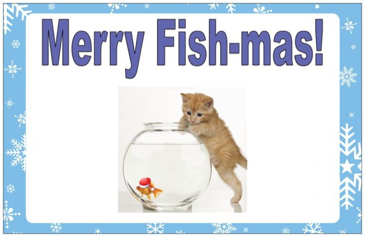 fish holiday card