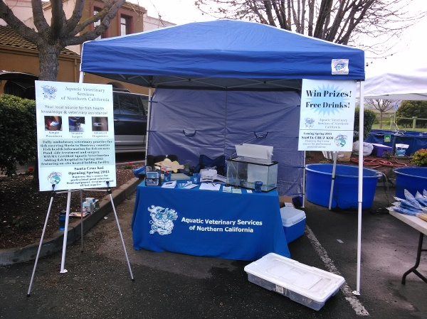 Our booth before the storm