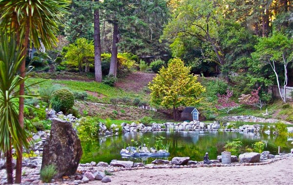 Rick pond