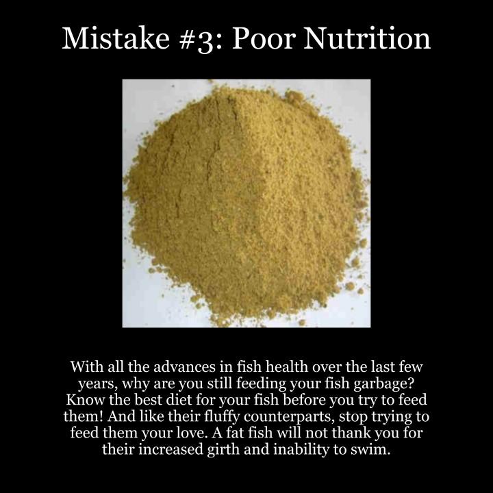 Top 5 Fish Mistakes – #3: PoorNutrition
