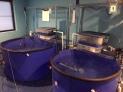 Our hospital facility